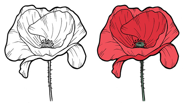 Poppy tattoo design for a friend | Flickr - Photo Sharing!