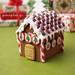 Miniature Christmas 2011 - Gingerbread House