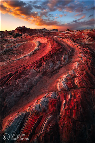 Red Dragon | by Zack Schnepf