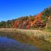 Yankee Springs Deep Lake #3