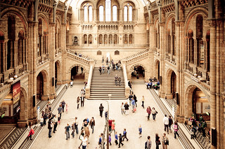 National History Museum | by romap