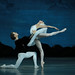 Swan Lake by Tchaikovsky/Petipa at the Mariinsky Theatre | 23.03.2012
