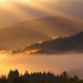 Morning Unfolding ~ Slovakia