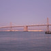 The Bay Bridge