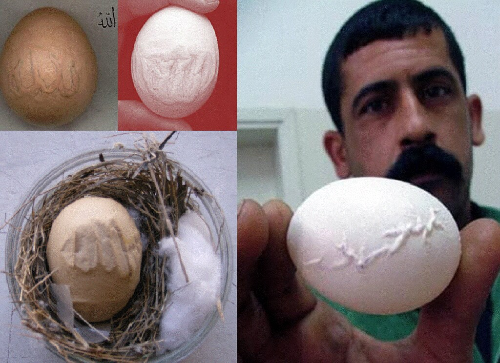 eggs miracle- with name of supreme- ALLAH! | Flickr - Photo Sharing!