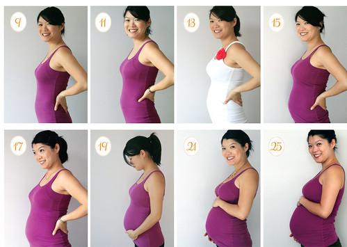 November belly progress - 4 1