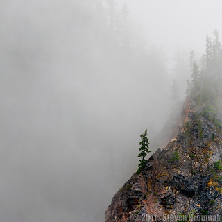 The Sentinel - Mt. Rainier National Park | by GAPHIKER