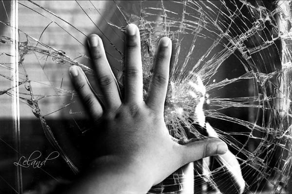 Broken Glass   [Day 251/365]   Leland Francisco   Flickr