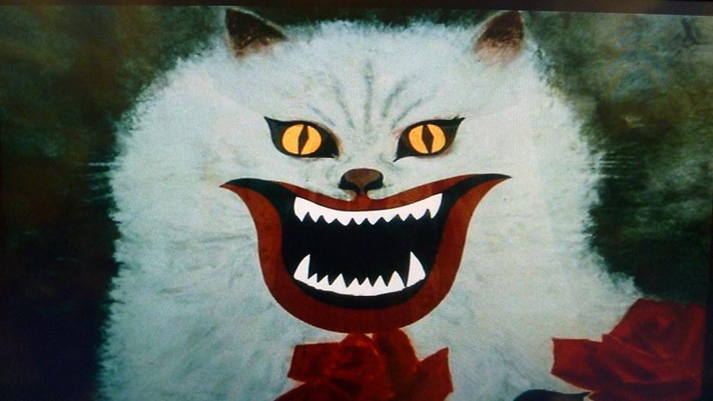 Japanese Cartoon Cat Subed New Kitten