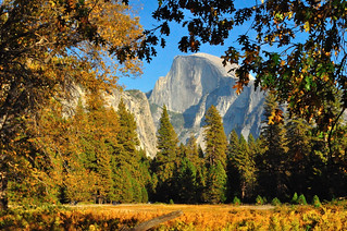 Half Dome framed by Fall Colors | by SandyK29