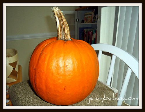 Sugar Pumpkin | by watchjennybake