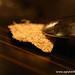coconut trivet Next Restaurant Tour Of Thailand Menu Gluten-Free (21)