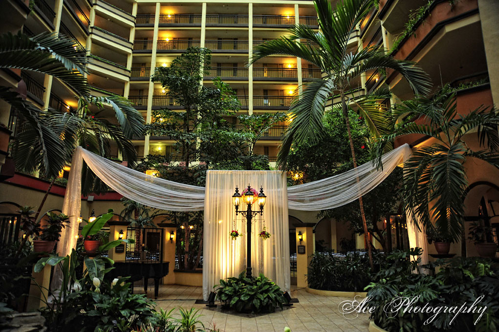 Indoor Garden And Lighting Indoor garden atrium wedding ceremony with gorgeous drapin flickr indoor garden atrium wedding ceremony with gorgeous draping and lighting by special events at embassy workwithnaturefo