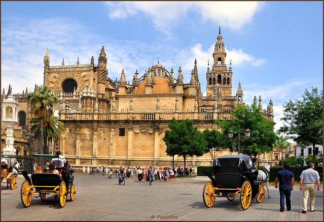 Sevilla plaza del triunfo catedral y giralda explore - Garden center sevilla ...