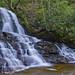 Laurel Falls in Great Smoky Mountain NP