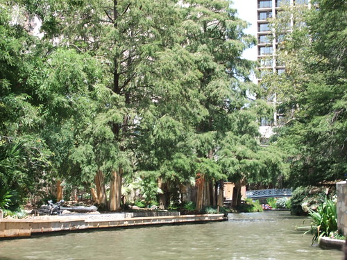 view of san antonio texas river walk 2011 | by Tim Pearce, Los Gatos