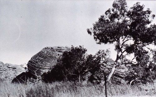 1921 Country between Ivanhoe and Argyle North Coast - KHS-2011-15-14-P2-D | by Kununurra Historical Society Archive & Museum