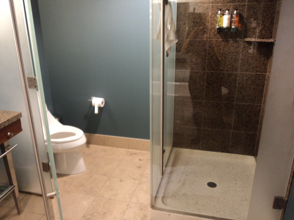 Bathroom With Glass Partition Water Closet And Shower