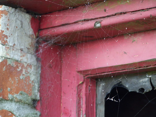 Cobweb abandoned, like the building | by simpson6642