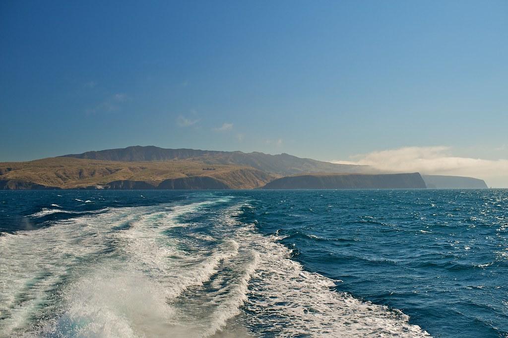 Channel Islands National Park Seabirds