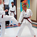 One World, Many Stories :: Week 4 :: Tae Kwon Do Demonstration :: pose demo 3