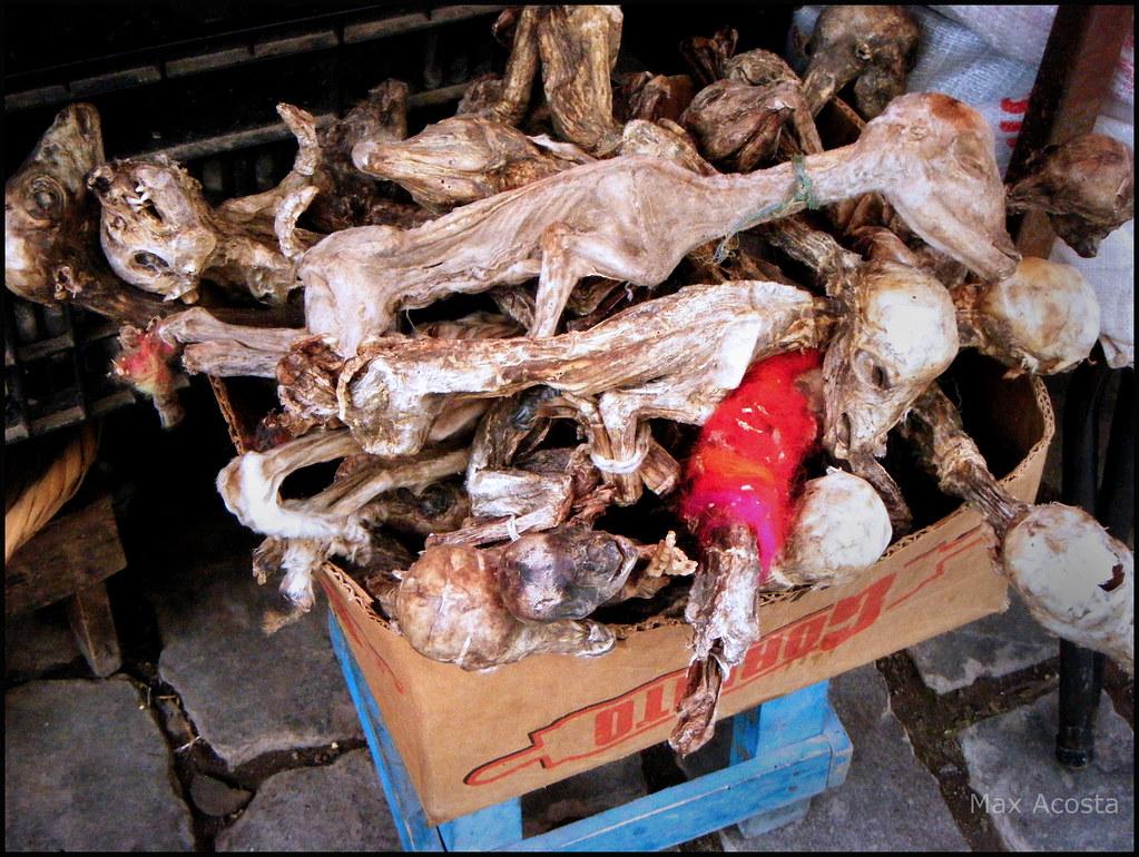 Mercado De Las Brujas La Paz Bolivia Max Acosta Flickr