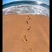 Les Pieds dans le sable, les yeux dans l'eau...