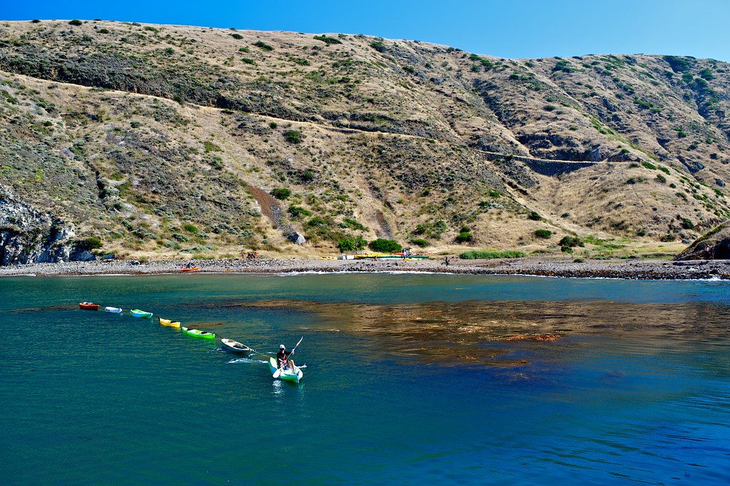 Catalina Island Marine Institute Jobs