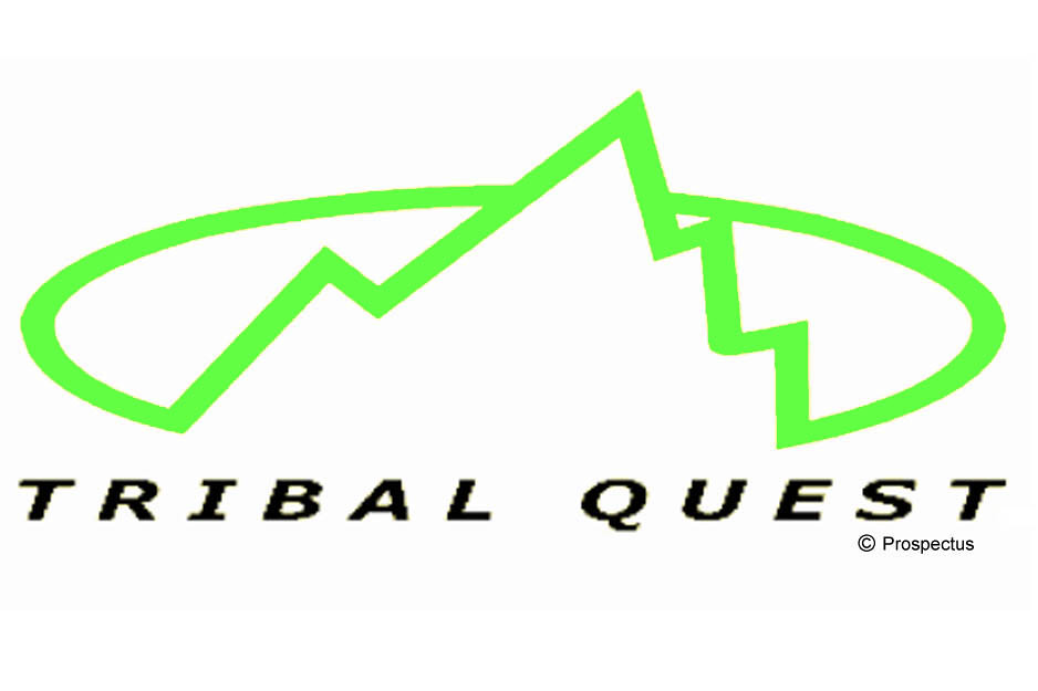 Tribal Logo With Copyright Symbol Prospectus Consulting Flickr