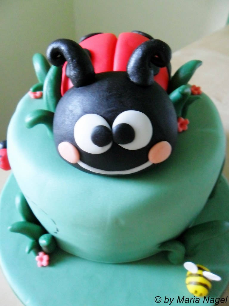 Marienkäfer Torte (Ladybird Cake)   Maria   Flickr