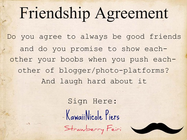 friendship contract template .