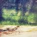RainyRainy