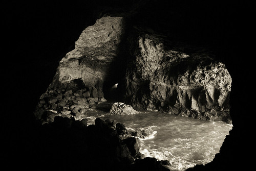Sea Lion Caves | by Robin Peeples