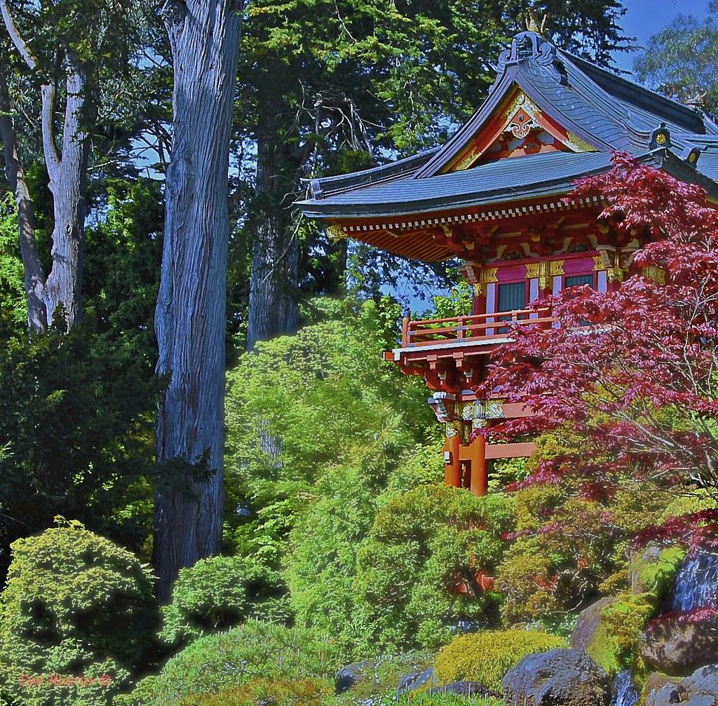 Japanese Tea Garden San Francisco The Japanese Tea Garde Flickr