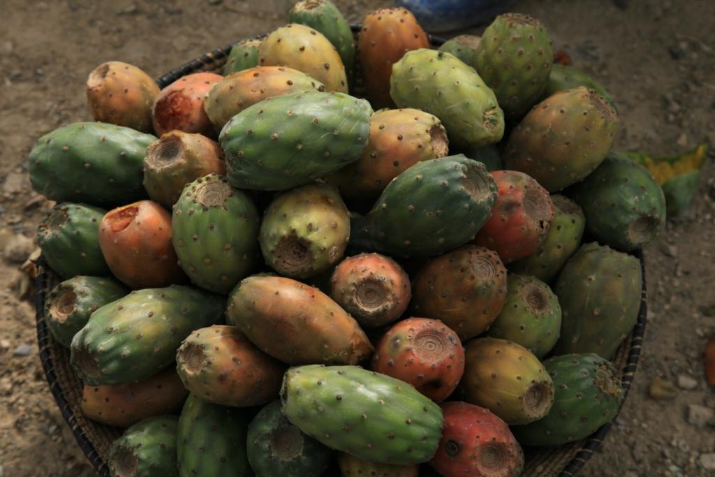 Get Free Credit Report >> Beles fruit, Mek'ele, Ethiopia | International Congress: Wat… | Flickr