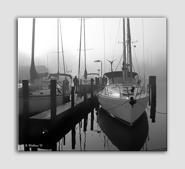 Morning Mist - Grayscale