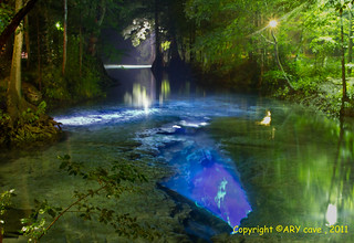 Little Devil Spring at Ginnie Springs Park. | by ARY-CAVE
