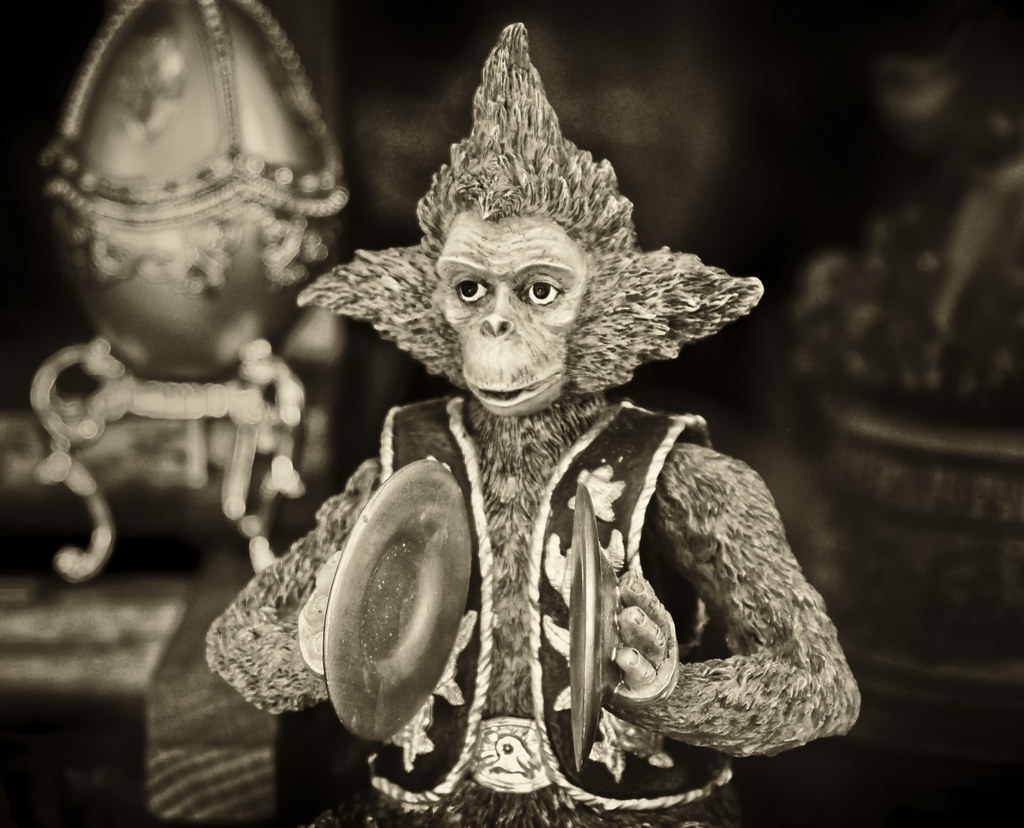 hey mr tambourine monkey play a song for me we saw thi flickr