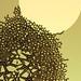 Erenn Ore- 'Delamination 3'