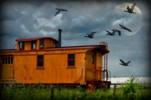 Train to Nowhere............... | by LynnF1024