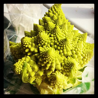 Fractal Cauliflower | by theunabonger