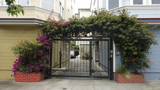 Bougainvilla Arch over Driveway | by Lynn Friedman