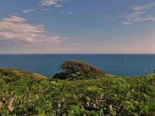 The Coastal Path at Durlston Country Park and National Nature Reserve in Swanage, Dorset, England - June 2010 | by SaffyH
