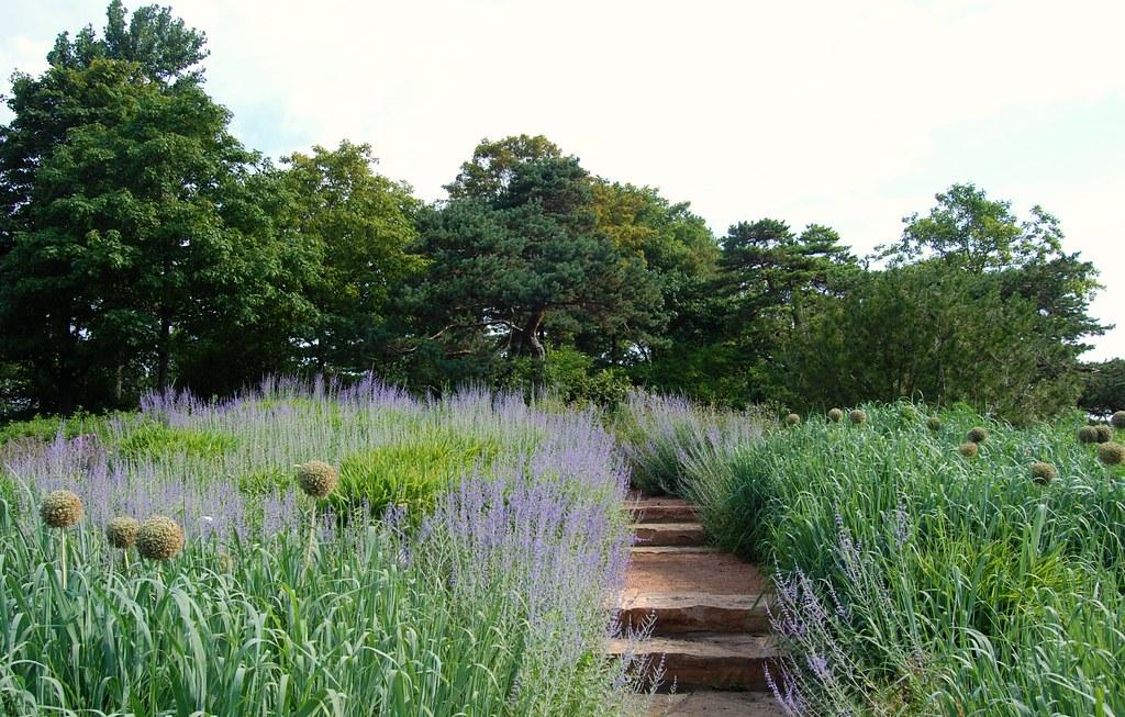 ... Chicago Botanic Garden   The Naturalistic Plantings On Evening Island |  By UGArdener