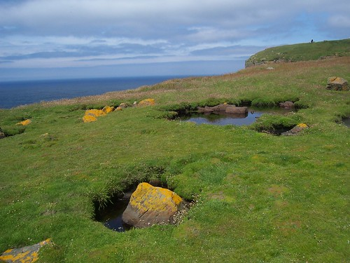 Handa Island, Rocks in Pools, North West Sutherland, July 2011 | by allanmaciver