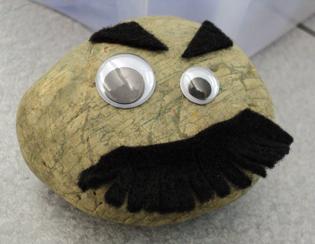 We Take Care Of Pet Rocks From Our Make Your Own Pet