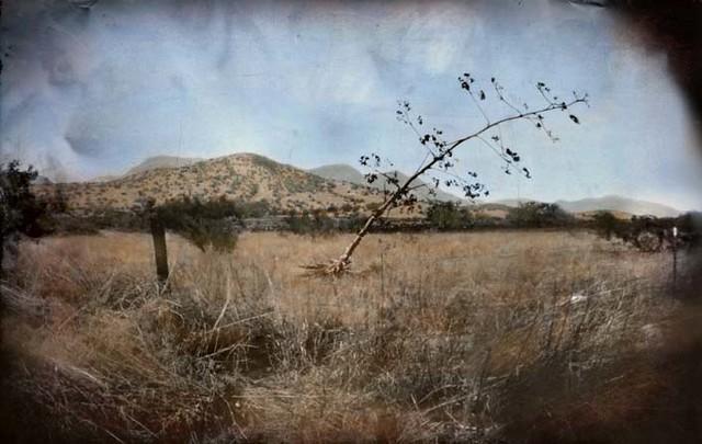 Brown Canyon range land, Huachuca Mountains, Arizona USA