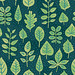Daily Pattern: Leaf Identification