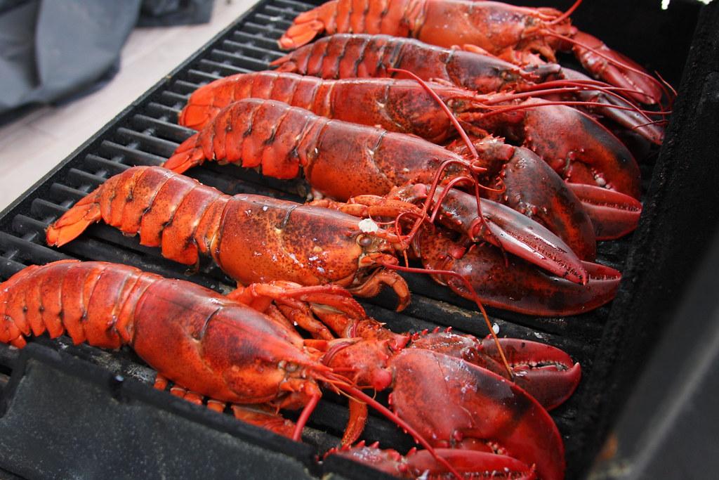 Maine Lobster vs. Maryland Crab? | Dana Moos | Flickr