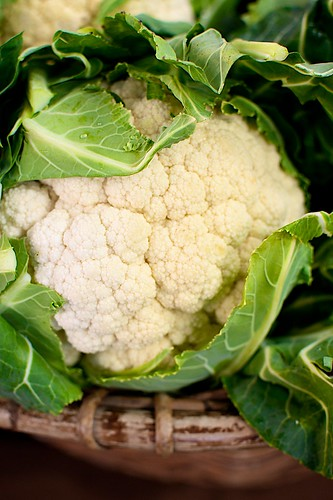 Cauliflower - Eveleigh Markets | by Lyndon (AussieDingo)